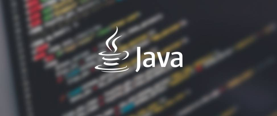 Come installare il JDK e i tool di sviluppo in Java Step #2