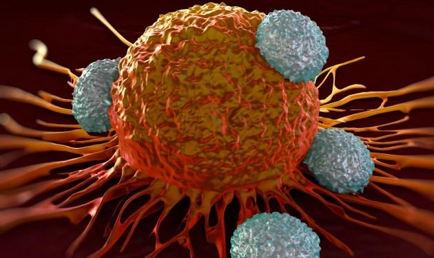 curare il cancro con i Big Data