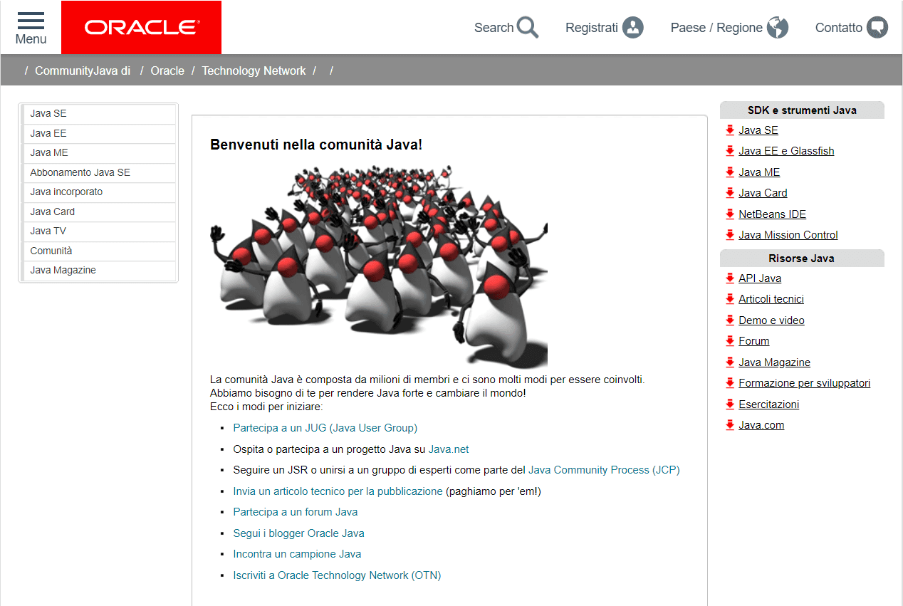 Java sviluppo - community