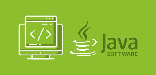 Mi fai un esempio di software che avete sviluppato con Java?