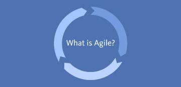 Agile origini e ruoli