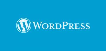 consulenza Wordpress
