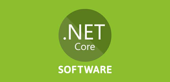 Mi fai un esempio di software che avete sviluppato con .NET Core?